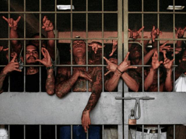 Jailed Gang Members