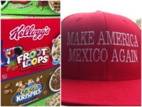 Kellogg Foundation Supported Racially Divisive Open Borders Group