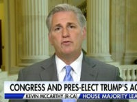GOP Leader McCarthy Declines to Back Trump Tariff Plan