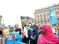 Swedish Library Bans Factual Book on Immigration, Says Contents are 'Contrary to Human Rights'