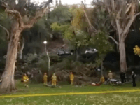Penn-Park-tree-collapse-12-18-2016 (Facebook)