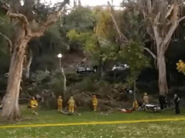Penn-Park-tree-collapse-12-18-2016 (Facebook)