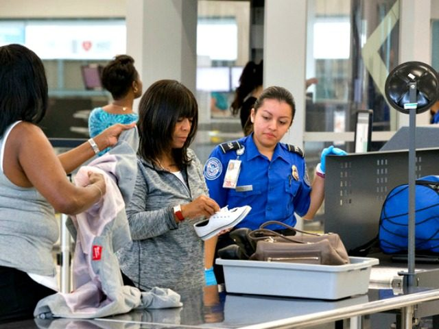 TSA checker AP