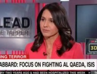 Dem Rep Gabbard: Criticism of Generals on Trump Cabinet 'Offensive'