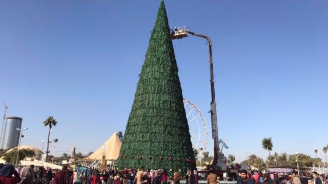 iraq-christmas-tree