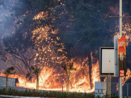 A picture taken on November 24, 2016 shows a fire raging in the northern Israeli port city of Haifa. Hundreds of Israelis fled their homes on the outskirts of the country's third city Haifa with others trapped inside as firefighters struggled to control raging bushfires, officials said. / AFP / …