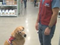 Texas Lowe's Hired Disabled Vet, His Service Dog