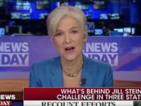 FNC's Wallace Battles Stein — 'Where Do You Get Off' Saying the American People Are Calling for a Recount?