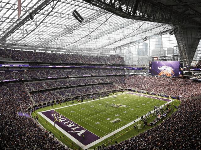 viking stadium