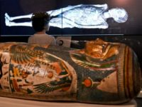 A young visitor looks at a 3D image of a CT scan of an Egyptian mummy, during a preview for a joint British-Australian exhibition in Sydney