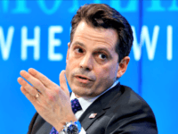 Scaramucci at Davos: Trump 'Gets It', 'Talks to Common Struggle of People Elites Don't Understand'