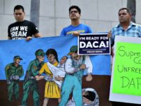DACA Joe Raedle Getty Images