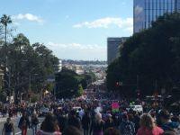 L.A. Anti-Trump protest (Adelle Nazarian / Breitbart News)