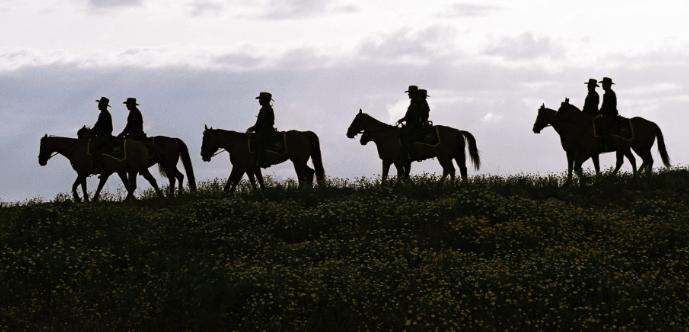 Mounted Patrol 1