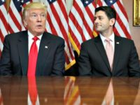Ryan Gazes at Trump AP