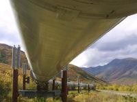 Trans-Alaska-Pipeline-12345--AP