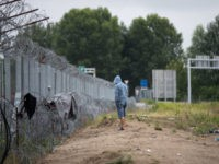 HORGOS, SERBIA - JULY 17: A man stands besides the border fence close to the E75 Horgas border crossing between Serbia and Hungary on July 17, 2016 in Horgos, Serbia. Serbia has announced that it will start joint army and police patrols on its borders with Bulgaria and Macedonia to …
