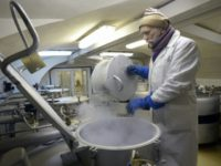 An employee of Russia's Institute of Plant Genetic Resources checks frozen seeds and grafts stored in metal vats in the institute's seed vault in Saint Petersburg