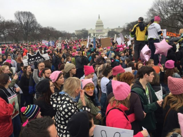 Demonstrators arrive on the National Mall in Washington, DC, for the anti-Trump Women's March on January 21, 2017