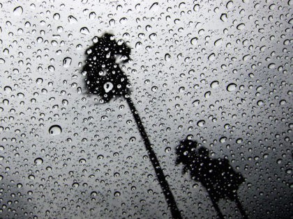 California Rain (Robert Couse-Baker / Flickr / CC / Cropped)