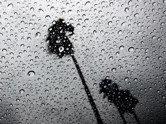 California Rain (Robert Couse-Baker / Flickr / CC / Cropped)