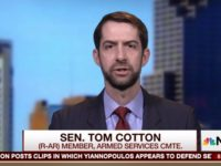 Tom Cotton: Picking McMaster as National Security Adviser 'Reflects Great Credit' on Trump