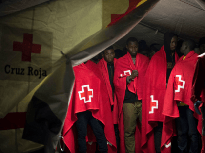 Red Cross Therapist Stabbed to Death by Syrian Asylum Seeker