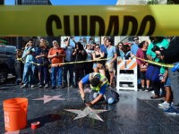 No Jail Time for Walk of Fame Trump Star Smasher
