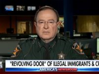 FL Sheriff: 'Not a Day Goes By That We All Don't Arrest A Lot of Illegal Aliens' Who Are 'Preying' on People