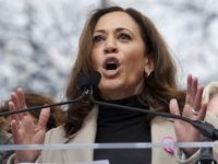 Kamala Harris: Trump Border Wall 'Stupid Use of Taxpayer Money'