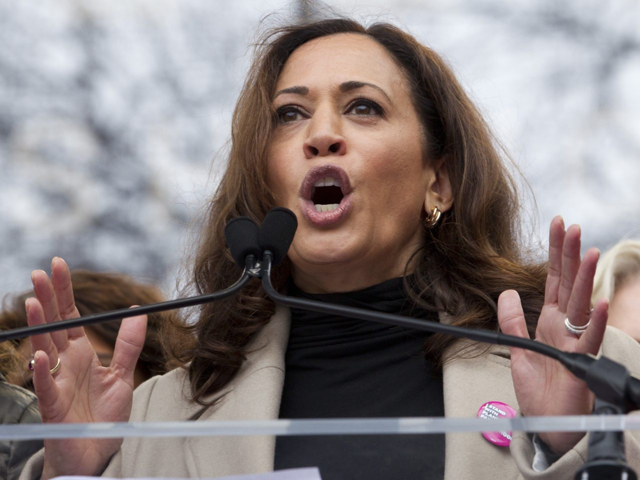 Kamala Harris's First Bill: Lawyers for Border Detainees