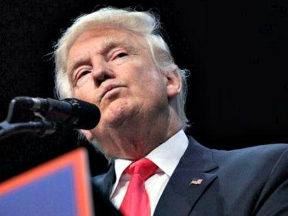 Trump Considers His Options AP