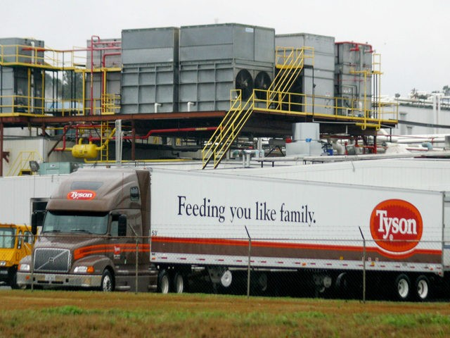 CARTHAGE TEXAS-25: A Tyson Poultry truck backup to its load dock at a processing plant in Carthage, Texas on Wednesday February 25. East Texas Poultry Producers and Farmers are concerned the newest Avian Flu strain, most recently found in a flock in Houston might spread to other flocks within East …