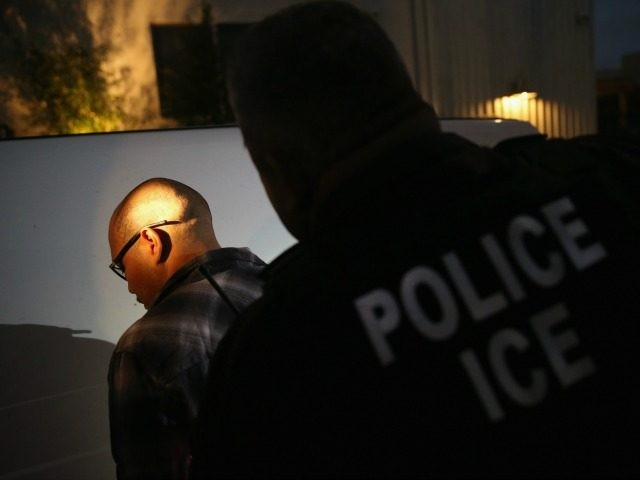 A man is detained by Immigration and Customs Enforcement (ICE), agents early on October 14, 2015 in Los Angeles, California. ICE agents said the undocumented immigrant was a convicted criminal and gang member who had previously been deported to Mexico and would be again. ICE builds deportation cases against thousands …
