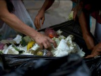 In this June 2, 2016 photo, people search a garbage bag for vegetables and fruit outside a supermarket in downtown Caracas, Venezuela. Unemployed people picking through food tossed out by nearby shops are frequently joined by small business owners, college students and pensioners, people who consider themselves middle class. Living standards have long ago been pulverized by triple-digit inflation and food shortages, pushing some to turn to urban farming to get vegetables back into their diets. (AP Photo/Fernando Llano)