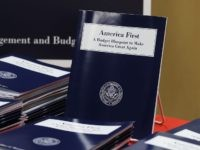 America First Trump Budget (Mark Wilson / Getty)