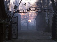 Naked People Slaughter a Sheep at Auschwitz Death Camp, Chain Themselves to Gate