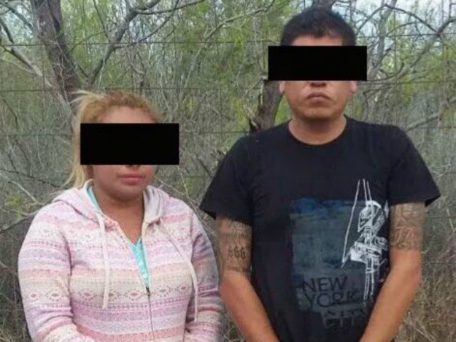 Coahuila Drugs 2
