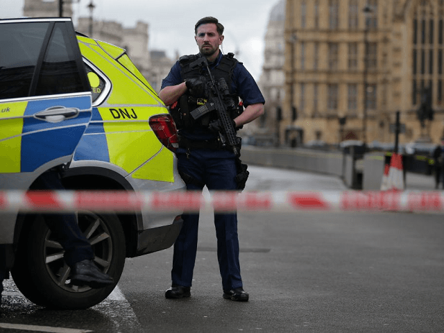 United Kingdom mulls whether citizens should have access to parliament after attack