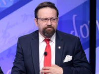 White House Sources: Reports of Gorka Leaving White House Are 'Incorrect'