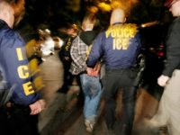 Immigration and Customs Enforcement (ICE) officers arrest a suspect during a pre-dawn raid in Santa Ana, Calif., in this file photo from Wednesday, Jan. 17, 2007. The Census Bureau plans to ask immigration enforcement officials to suspend raids during the 2010 census to help improve accuracy in counting illegal immigrants. …