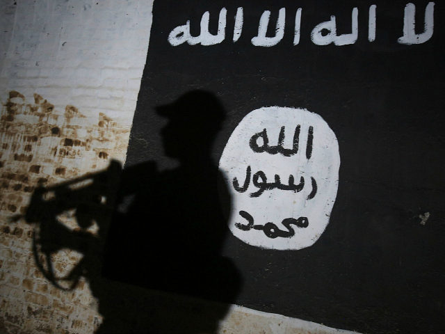 A member of the Iraqi forces walks past a mural bearing the logo of the Islamic State (IS) group in a tunnel that was reportedly used as a training centre by the jihadists, on March 1, 2017, in the village of Albu Sayf, on the southern outskirts of Mosul. Iraqi forces launched a major push on February 19 to recapture the west of Mosul from the Islamic State jihadist group, retaking the airport and then advancing north. AHMAD AL-RUBAYE / AFP