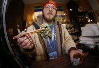 Matt Hart, Lemon Skunk marijuana bud