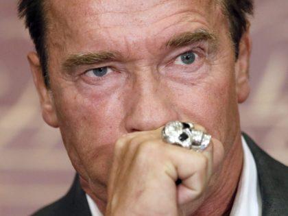 Arnold Schwarzenegger (Patrick Kovarik / AFP / Getty)