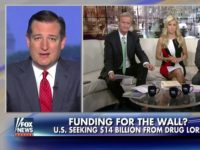 Ted Cruz: Schumer Trying to Force a Gov't Shutdown to Appease the 'Left-Wing Radical Base'