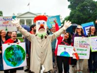March for Science D.C. Jessica KourkounisGetty