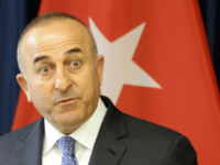 Turkish Foreign Minister Mevlut Cavusoglu gestures during a press conference with his Lithuanian counterpart (not in picture) in Vilnius on April 3, 2015.