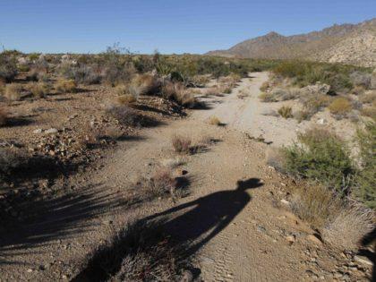 Mojave Desert (Chris Carlson / Associated Press)