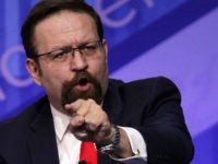 Protester Screams at Gorka Through Car Window