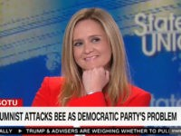 Samantha Bee: America Does Not Have a 'Smug Liberal Problem'